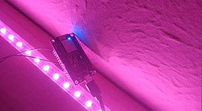 strip of pink LEDs embedded in a shelf, with an esp8266 on a wire in the foreground